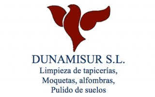 Logotipo Dunamisur